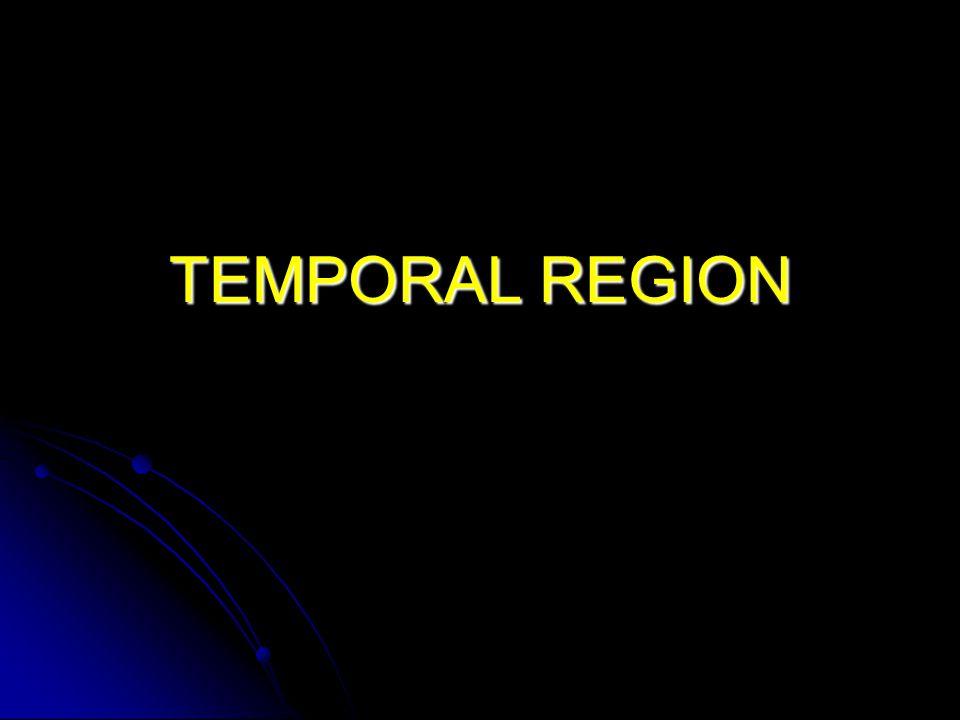TEMPORAL REGION