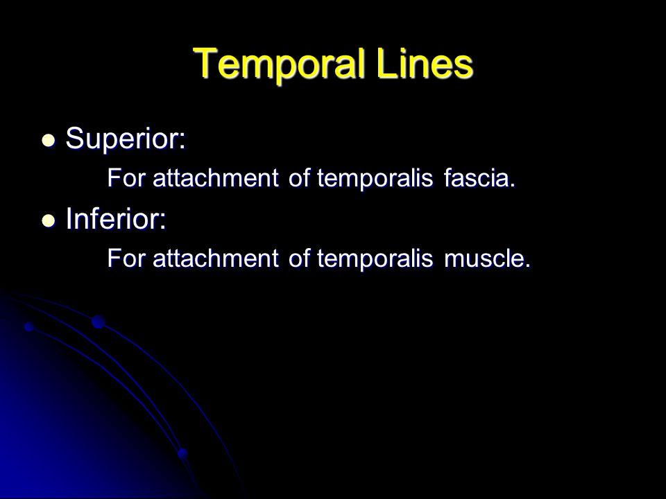 Temporal Lines Superior: Inferior: