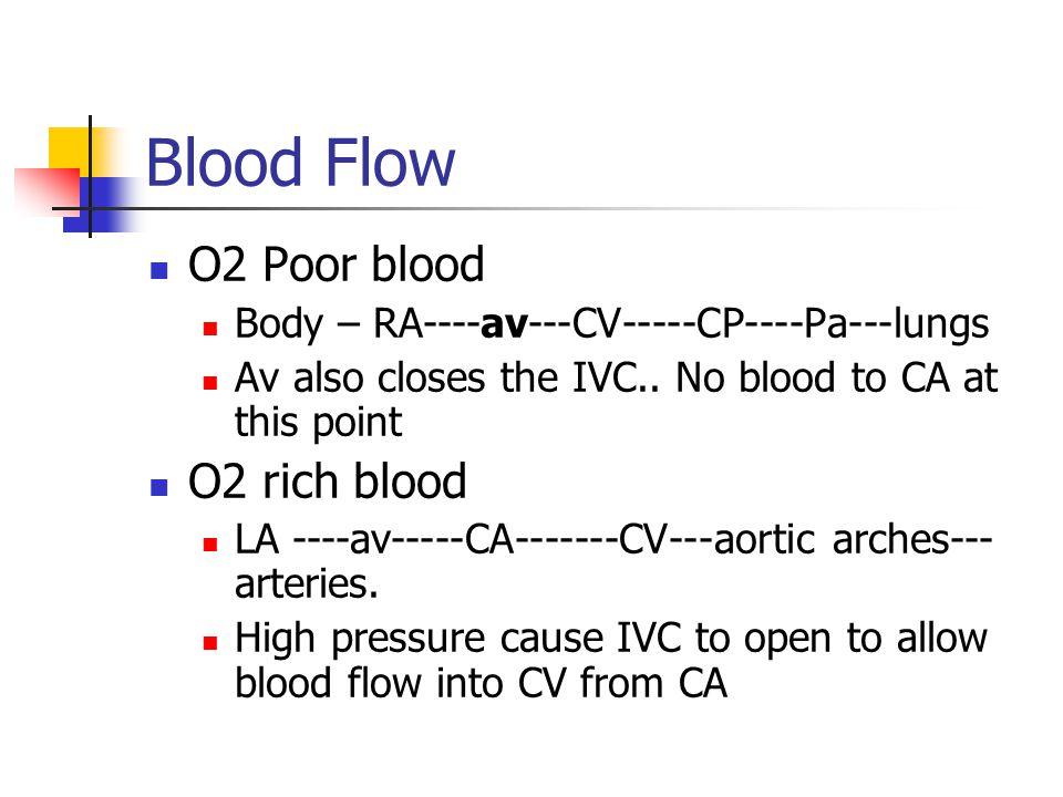 Blood Flow O2 Poor blood O2 rich blood