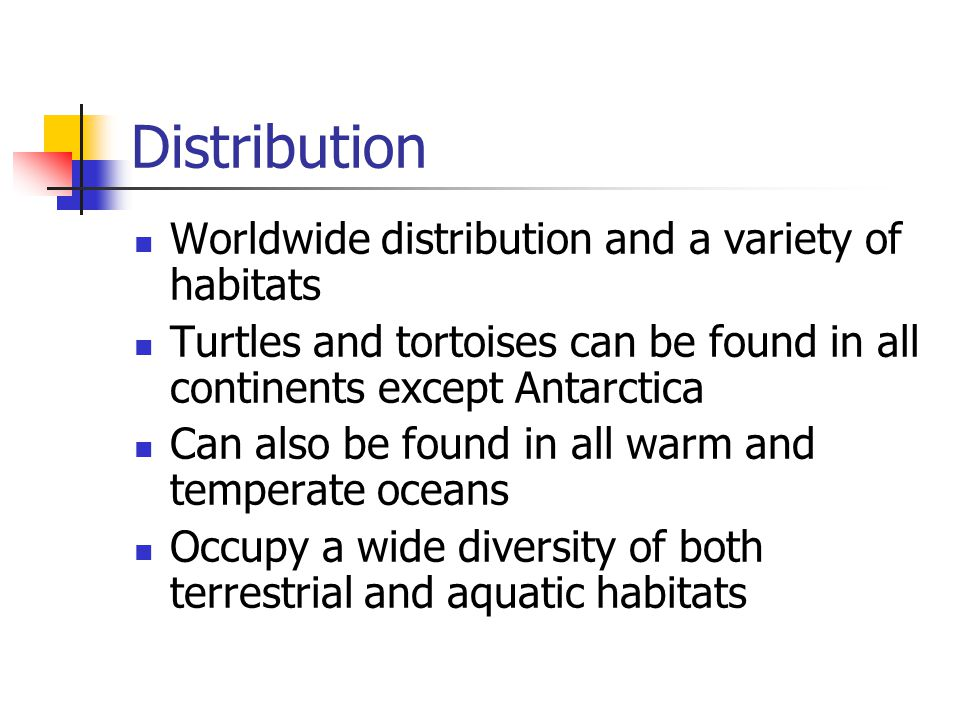 Distribution Worldwide distribution and a variety of habitats