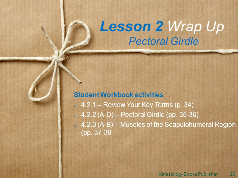 Lesson 2 Wrap Up Pectoral Girdle Student Workbook activities