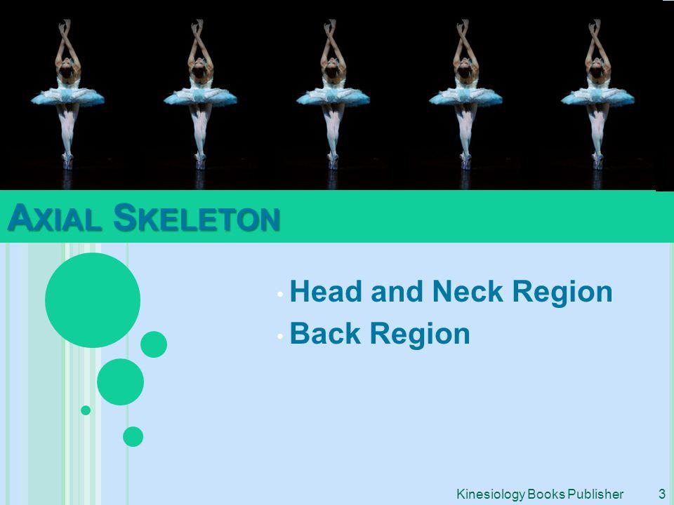 Head and Neck Region Back Region