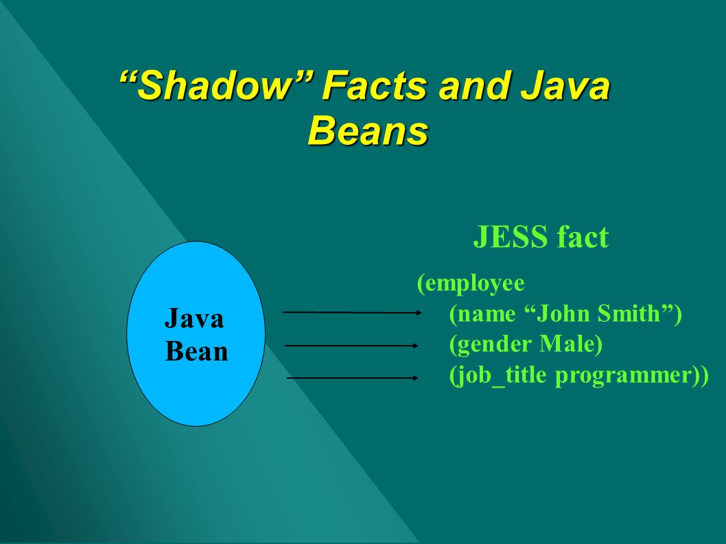 Shadow Facts and Java Beans