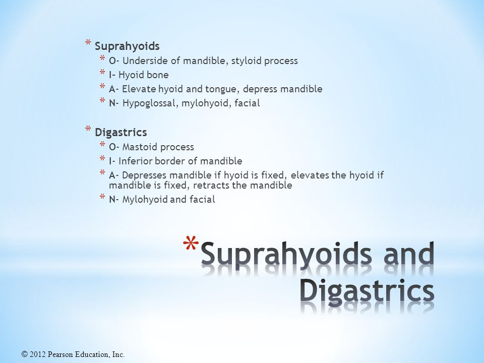Suprahyoids and Digastrics