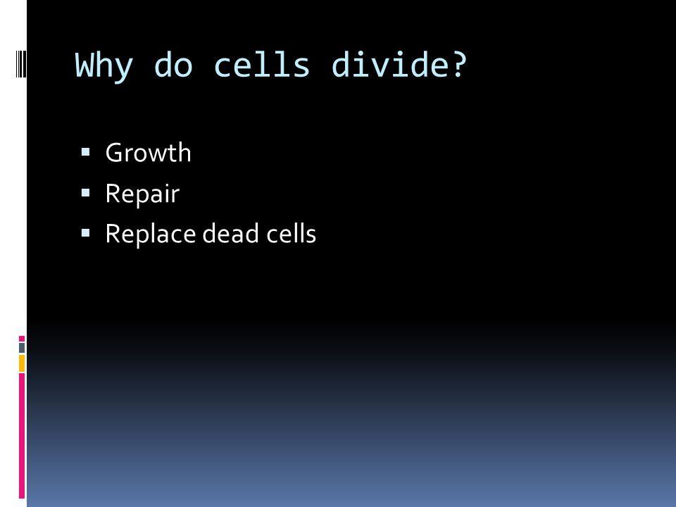 Why do cells divide Growth Repair Replace dead cells
