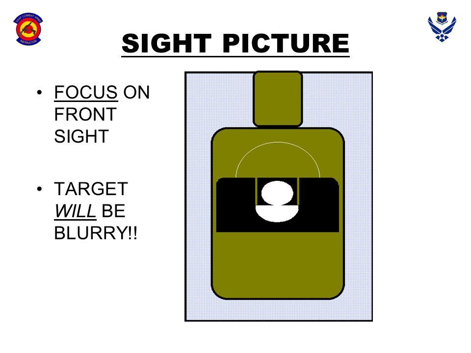 SIGHT PICTURE FOCUS ON FRONT SIGHT TARGET WILL BE BLURRY!!