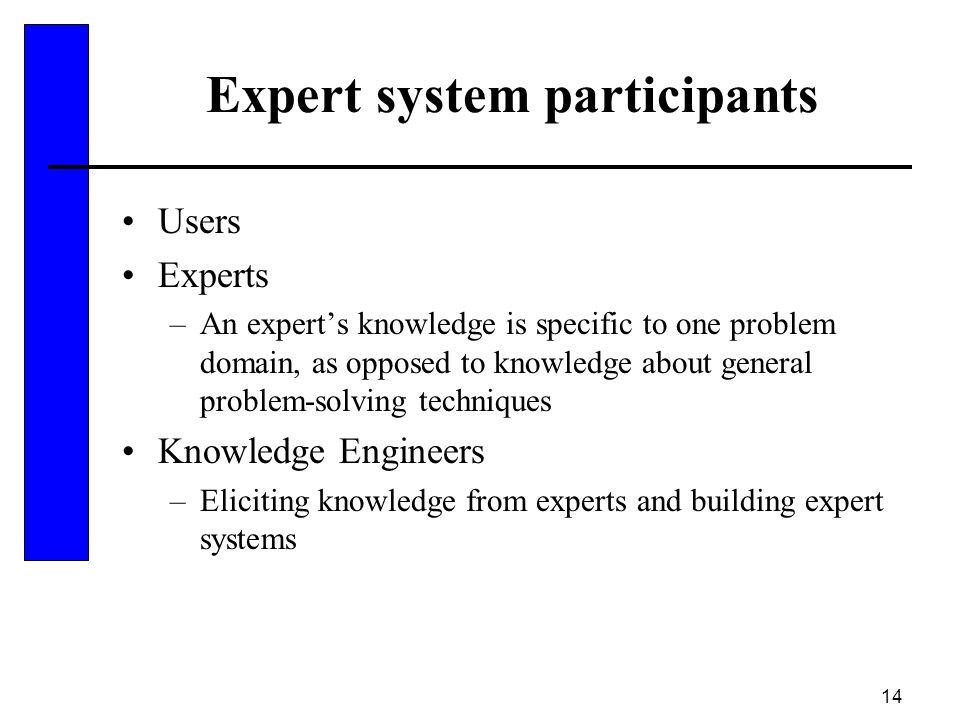 Expert system participants