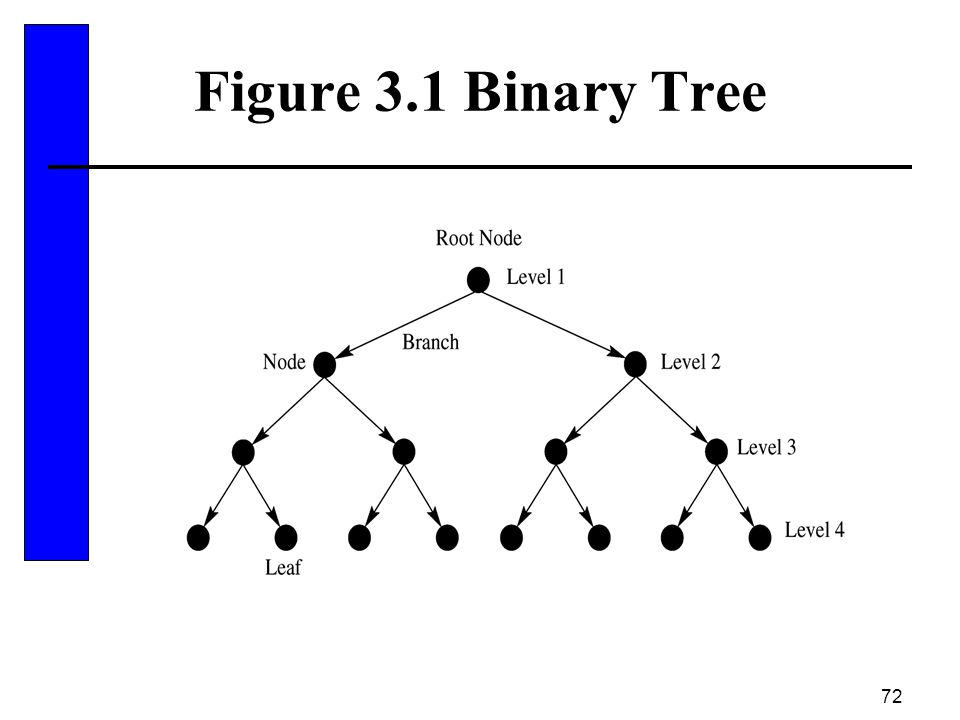 Figure 3.1 Binary Tree
