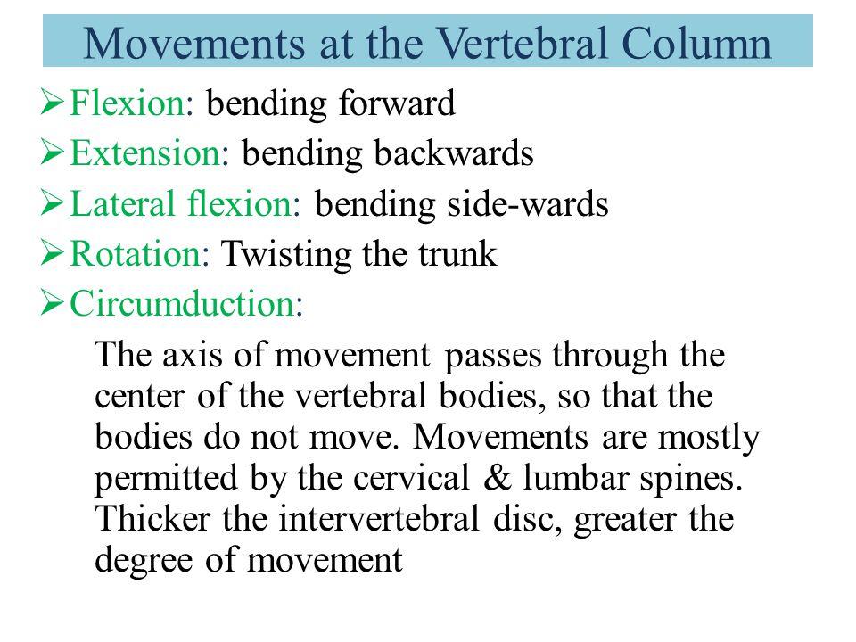 Movements at the Vertebral Column