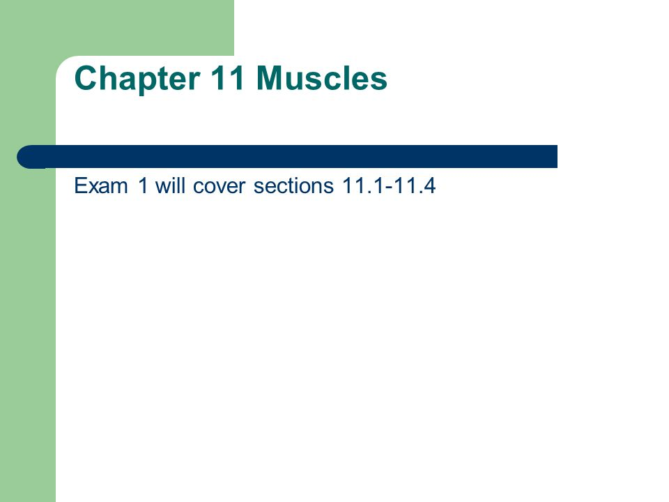 Chapter 11 Muscles Exam 1 will cover sections 11.1-11.4