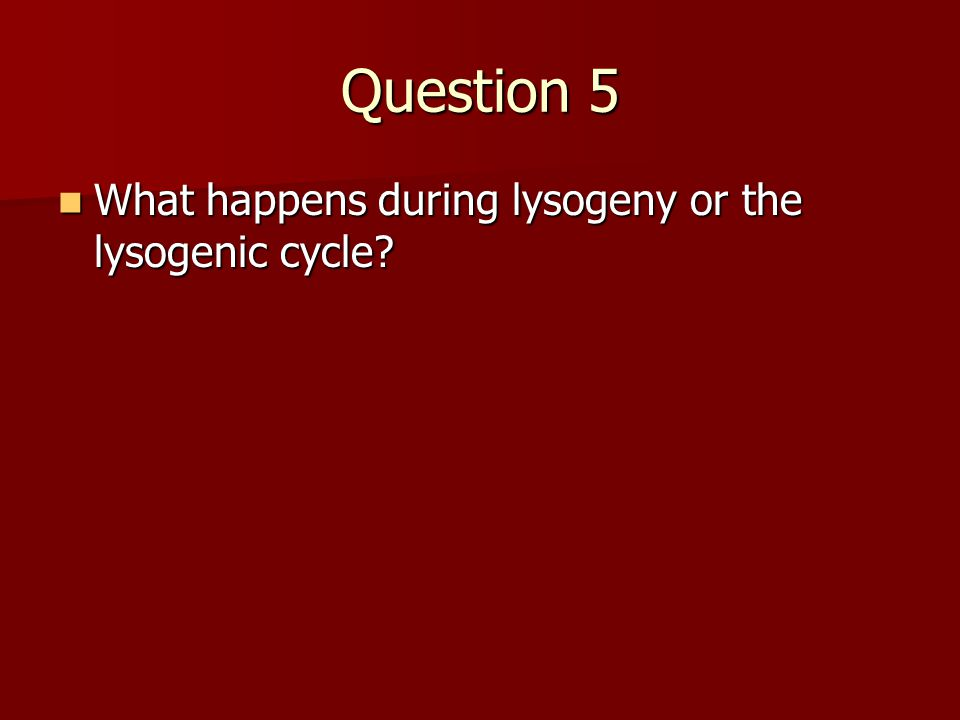 Question 5 What happens during lysogeny or the lysogenic cycle