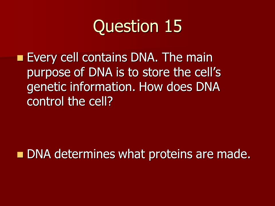 Question 15 Every cell contains DNA. The main purpose of DNA is to store the cell's genetic information. How does DNA control the cell