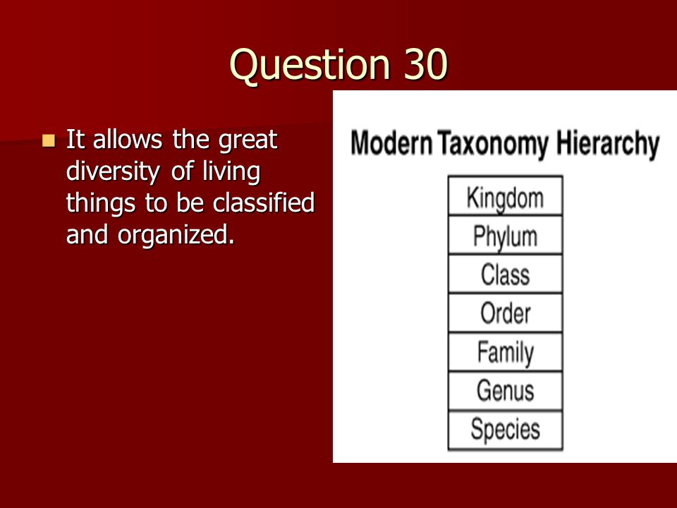 Question 30 It allows the great diversity of living things to be classified and organized.
