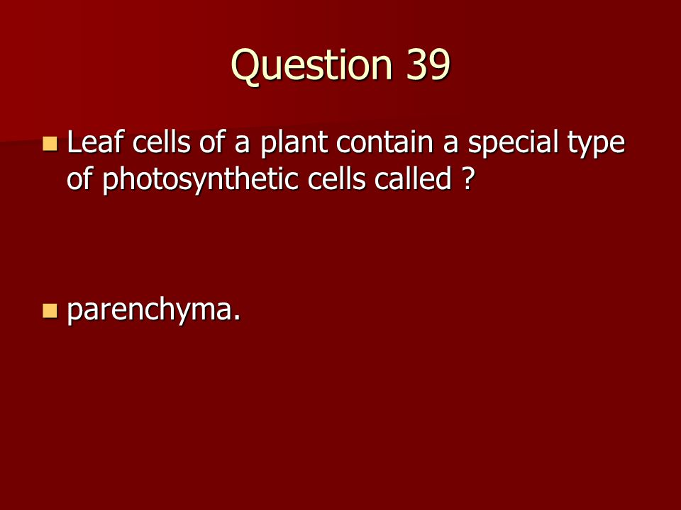 Question 39 Leaf cells of a plant contain a special type of photosynthetic cells called .