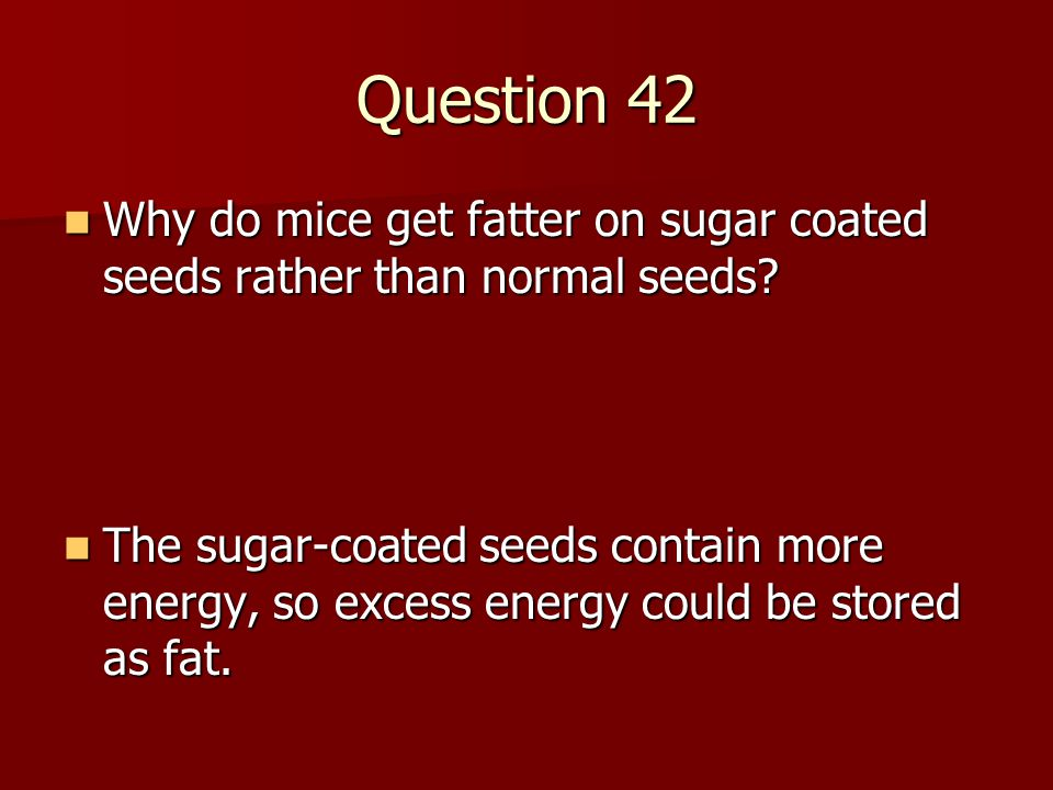 Question 42 Why do mice get fatter on sugar coated seeds rather than normal seeds