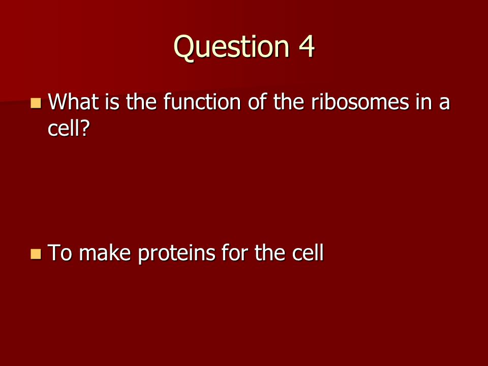 Question 4 What is the function of the ribosomes in a cell