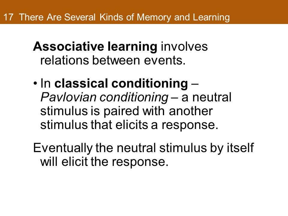 17 There Are Several Kinds of Memory and Learning