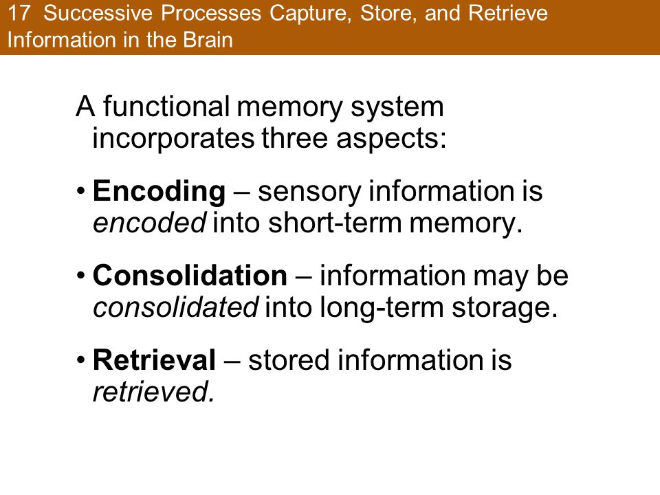 A functional memory system incorporates three aspects: