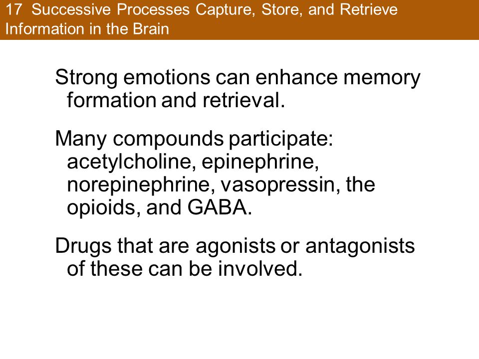 Strong emotions can enhance memory formation and retrieval.