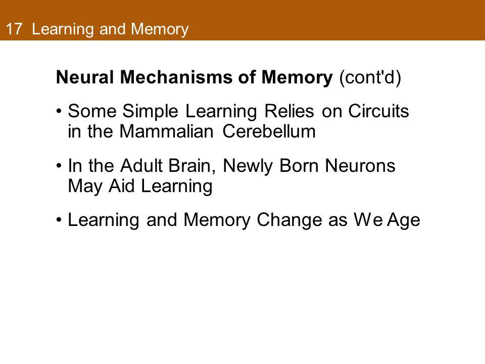 Neural Mechanisms of Memory (cont d)