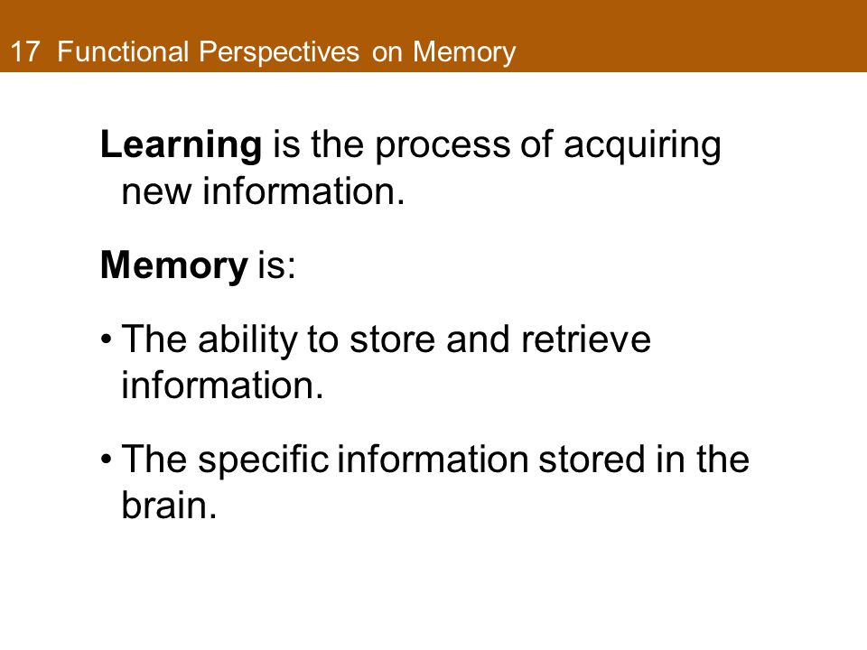17 Functional Perspectives on Memory