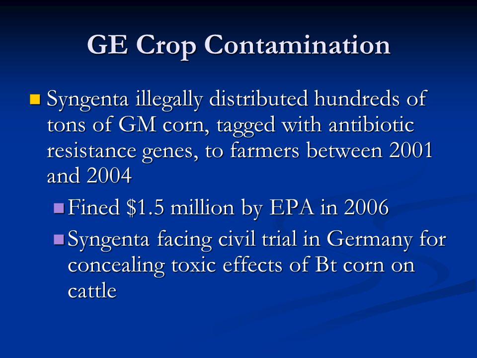 GE Crop Contamination