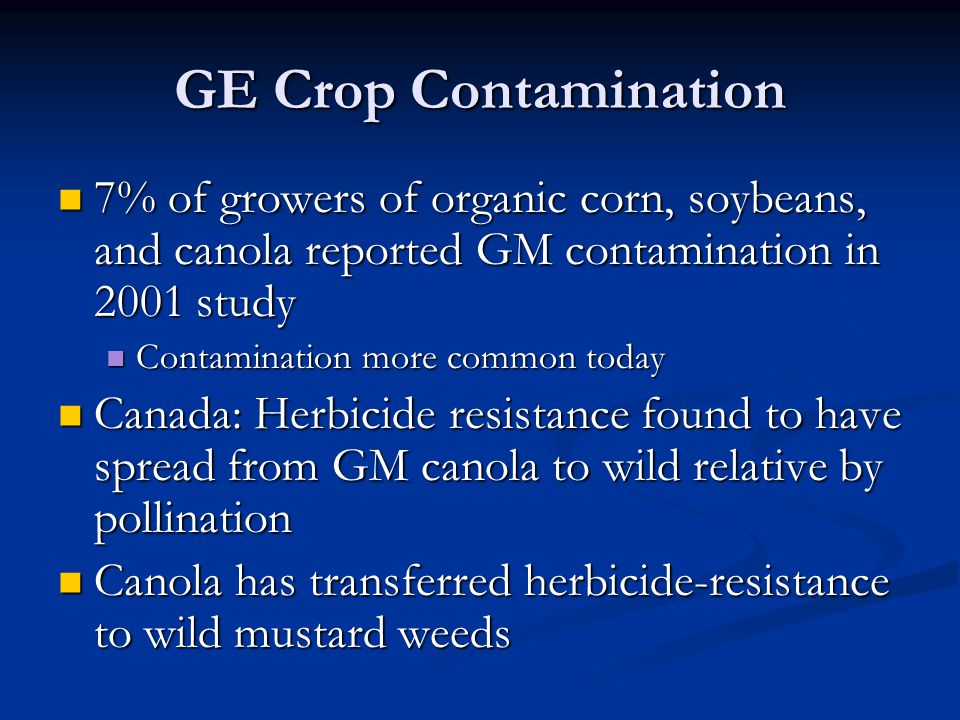 GE Crop Contamination 7% of growers of organic corn, soybeans, and canola reported GM contamination in 2001 study.