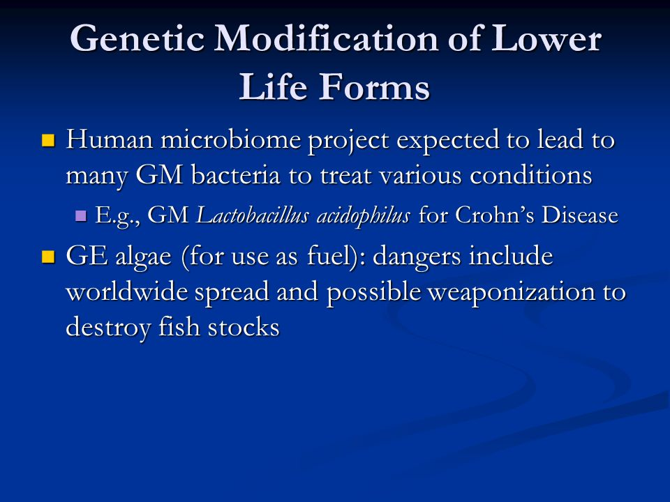 Genetic Modification of Lower Life Forms