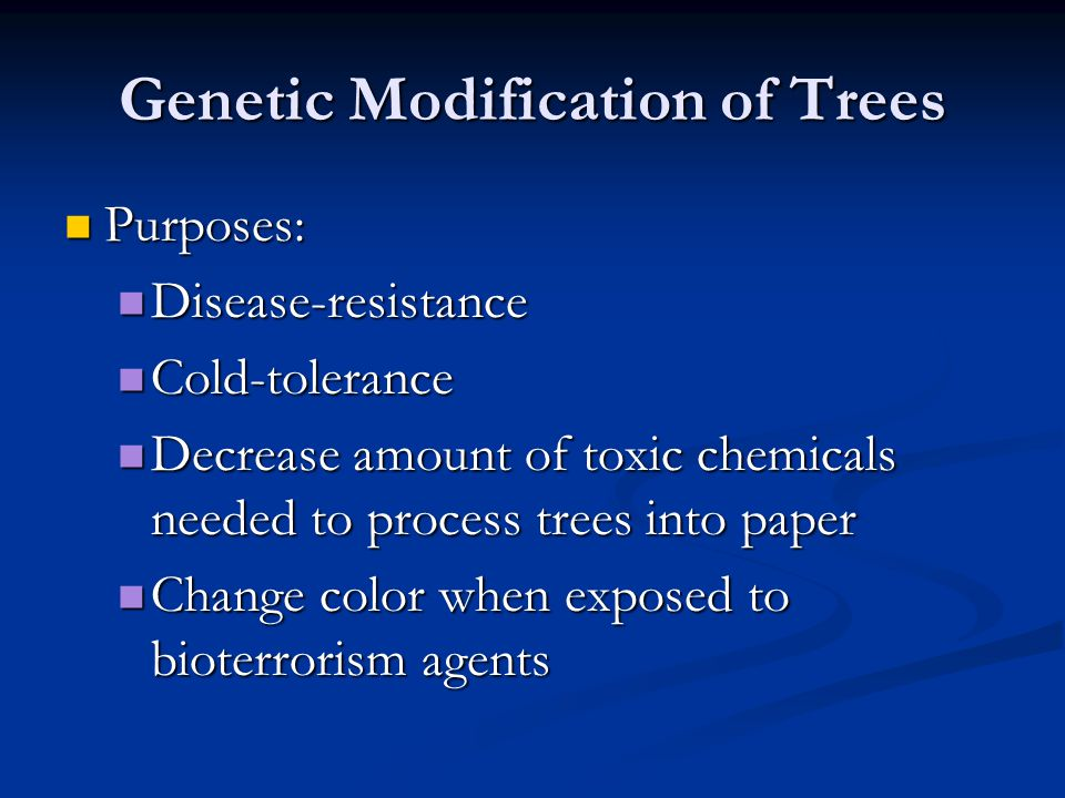 Genetic Modification of Trees