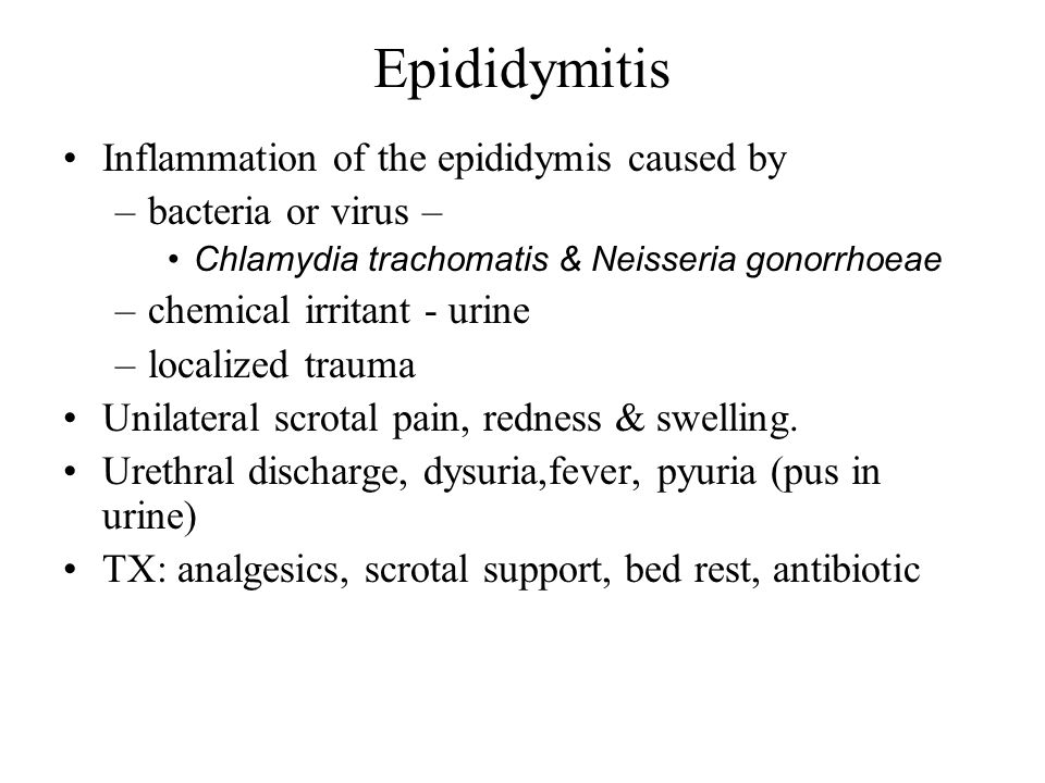 Epididymitis Inflammation of the epididymis caused by