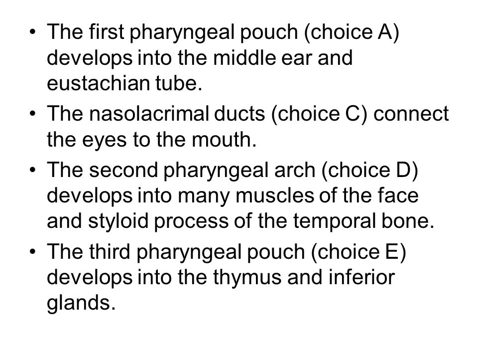 The first pharyngeal pouch (choice A) develops into the middle ear and eustachian tube.