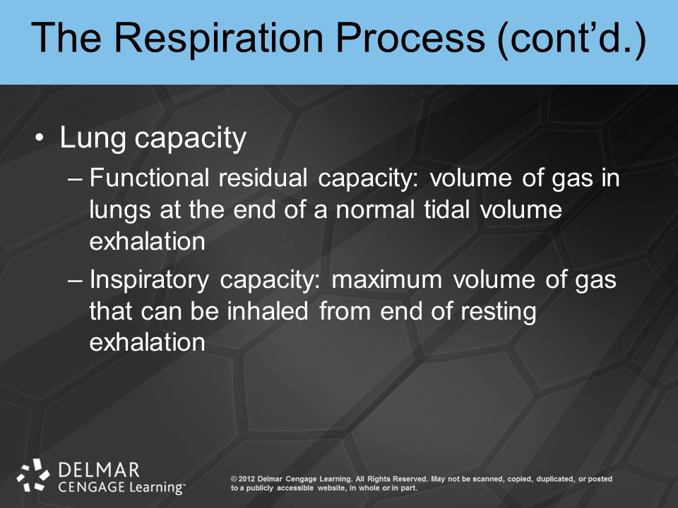 The Respiration Process (cont'd.)