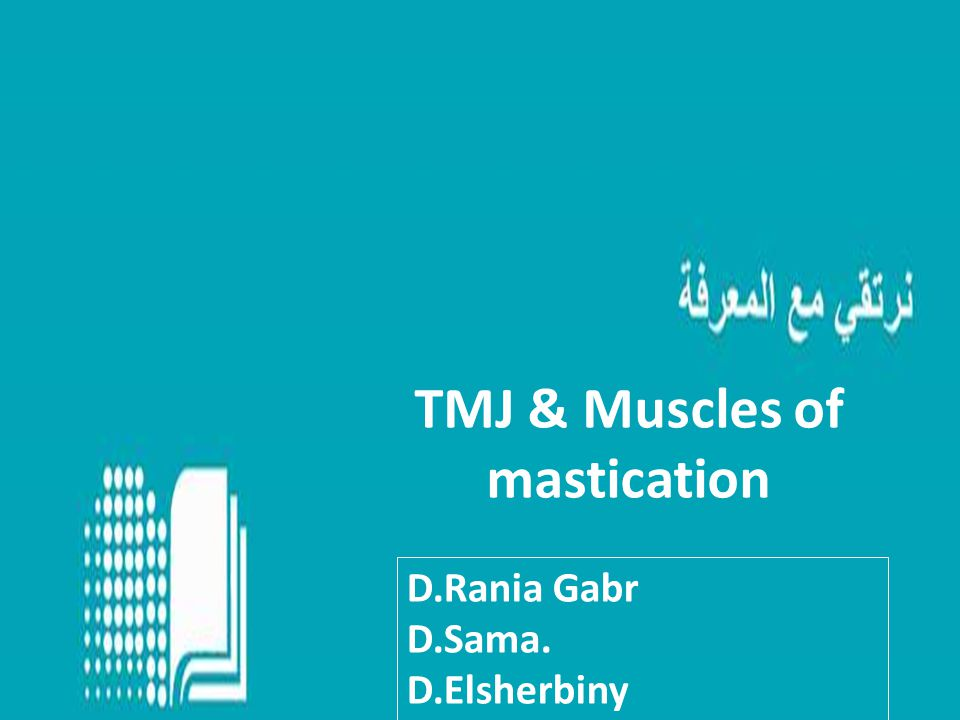 TMJ & Muscles of mastication