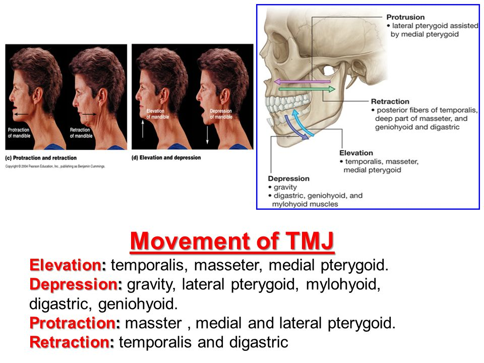 Movement of TMJ Elevation: temporalis, masseter, medial pterygoid.