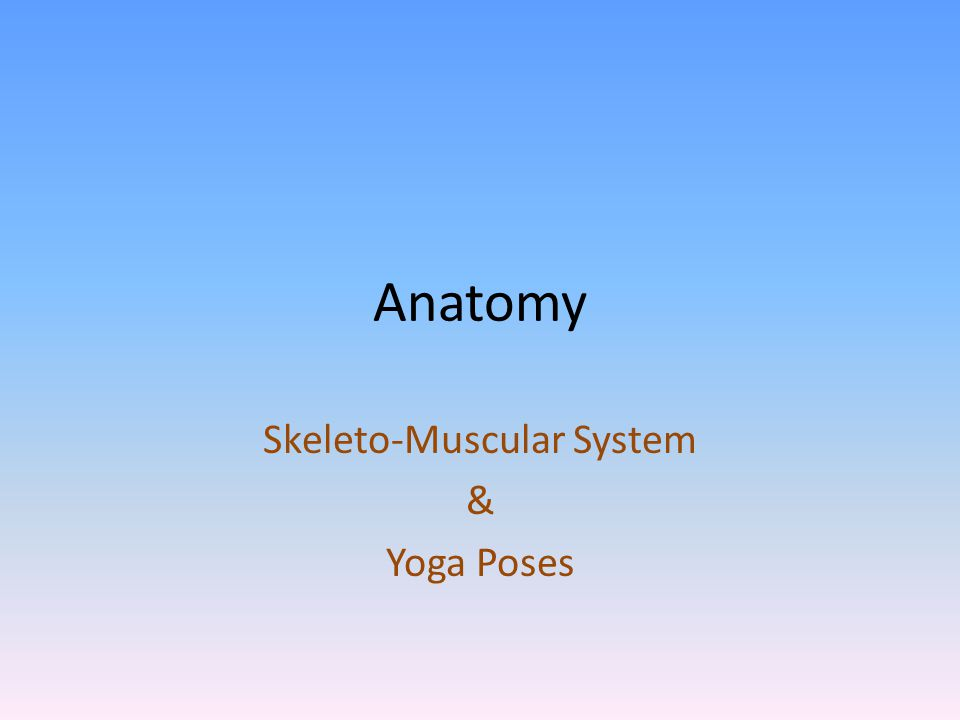 Skeleto-Muscular System & Yoga Poses