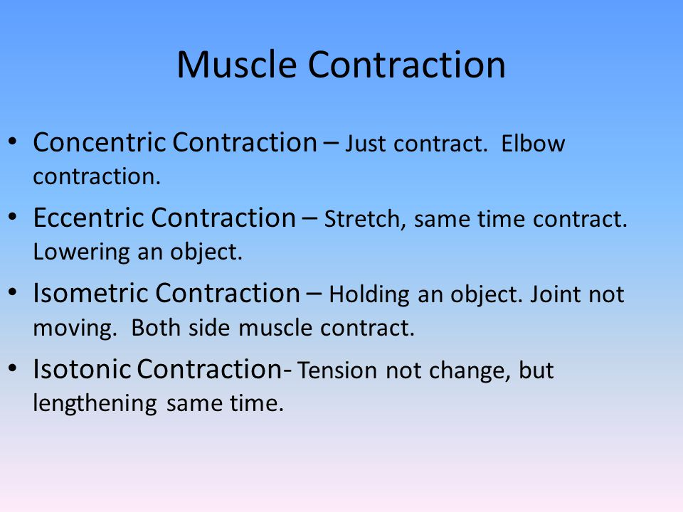 Muscle Contraction Concentric Contraction – Just contract. Elbow contraction.