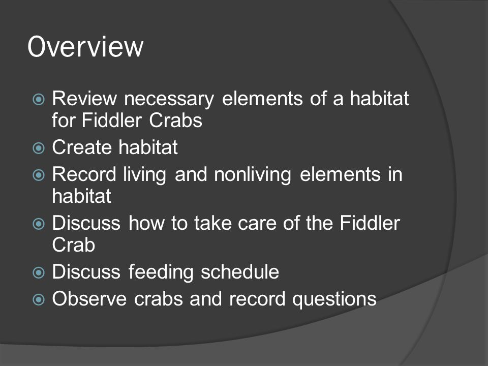 Overview Review necessary elements of a habitat for Fiddler Crabs