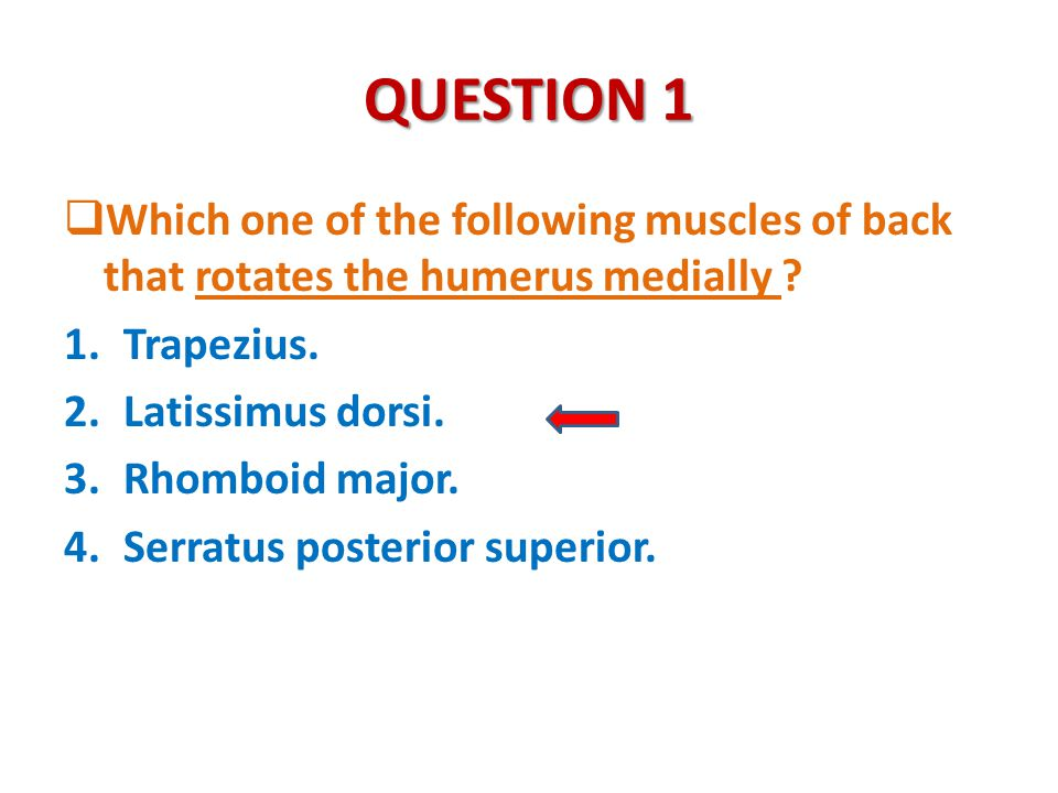 QUESTION 1 Which one of the following muscles of back that rotates the humerus medially Trapezius.