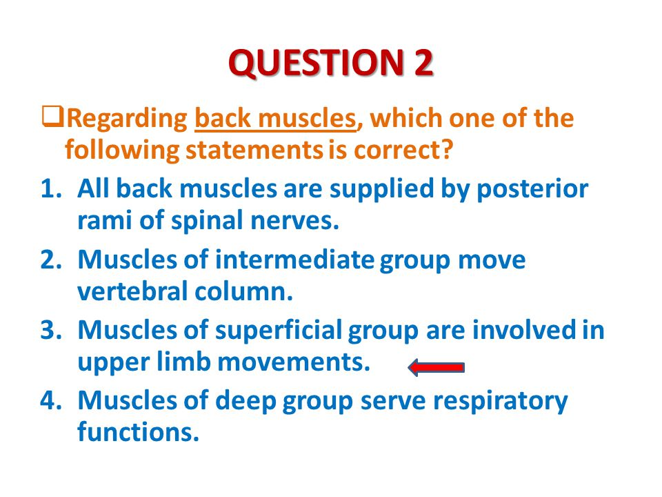 QUESTION 2 Regarding back muscles, which one of the following statements is correct
