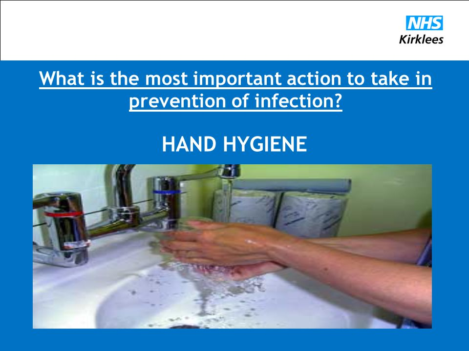 What is the most important action to take in prevention of infection