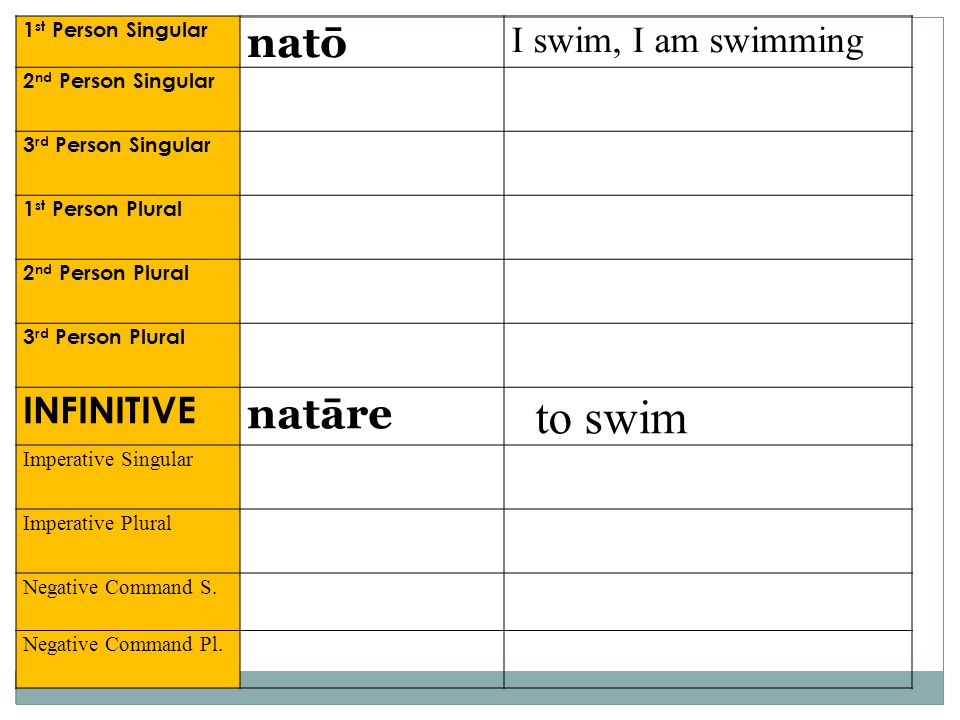 to swim natō natāre I swim, I am swimming INFINITIVE