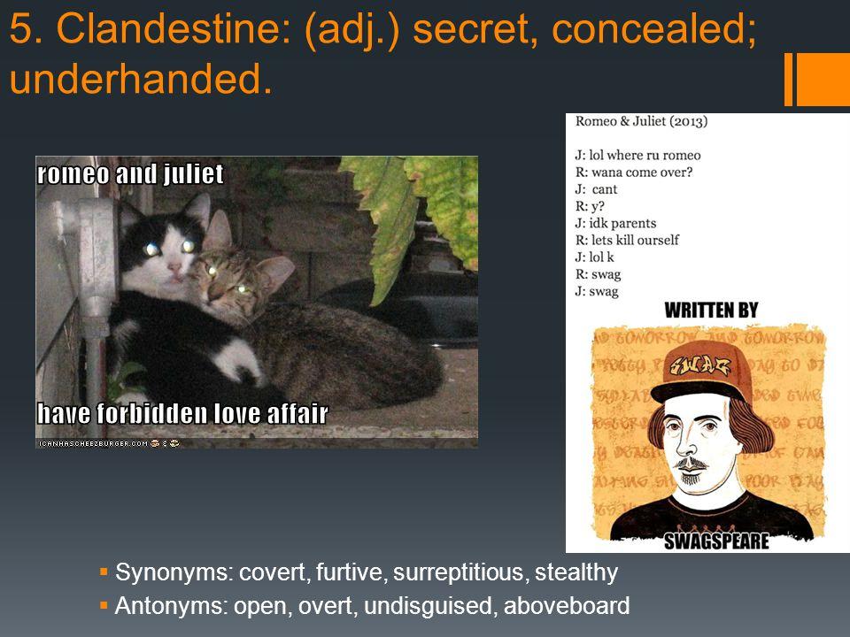 5. Clandestine: (adj.) secret, concealed; underhanded.