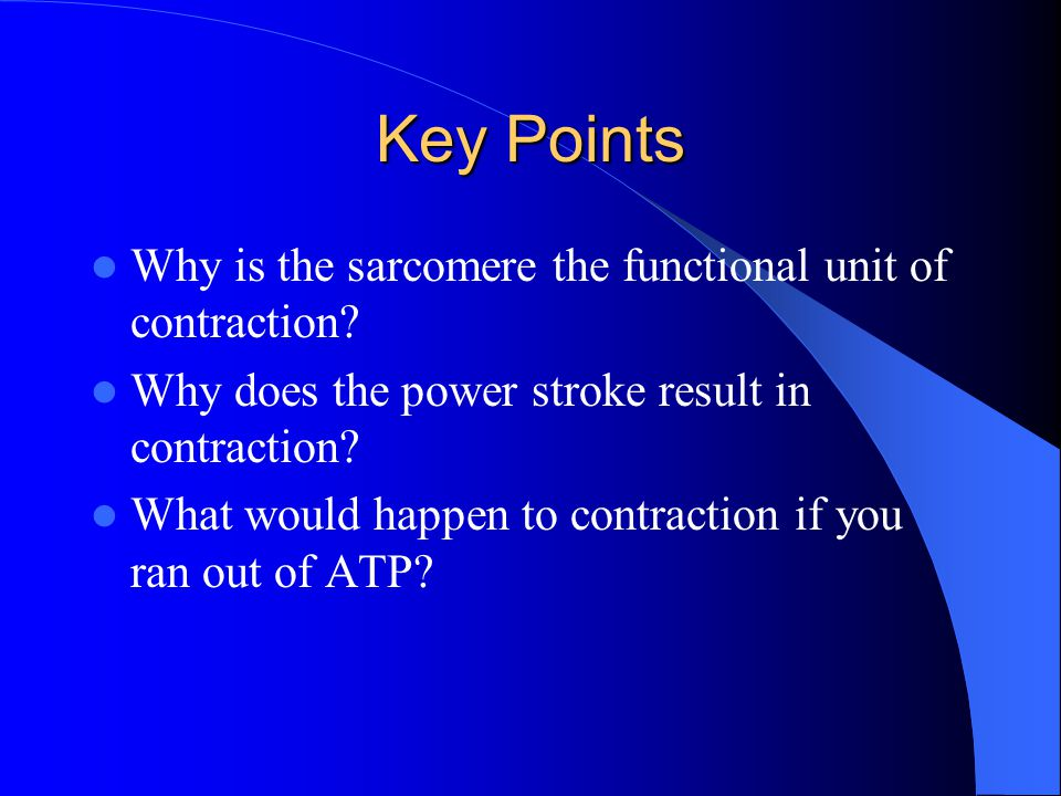 Key Points Why is the sarcomere the functional unit of contraction