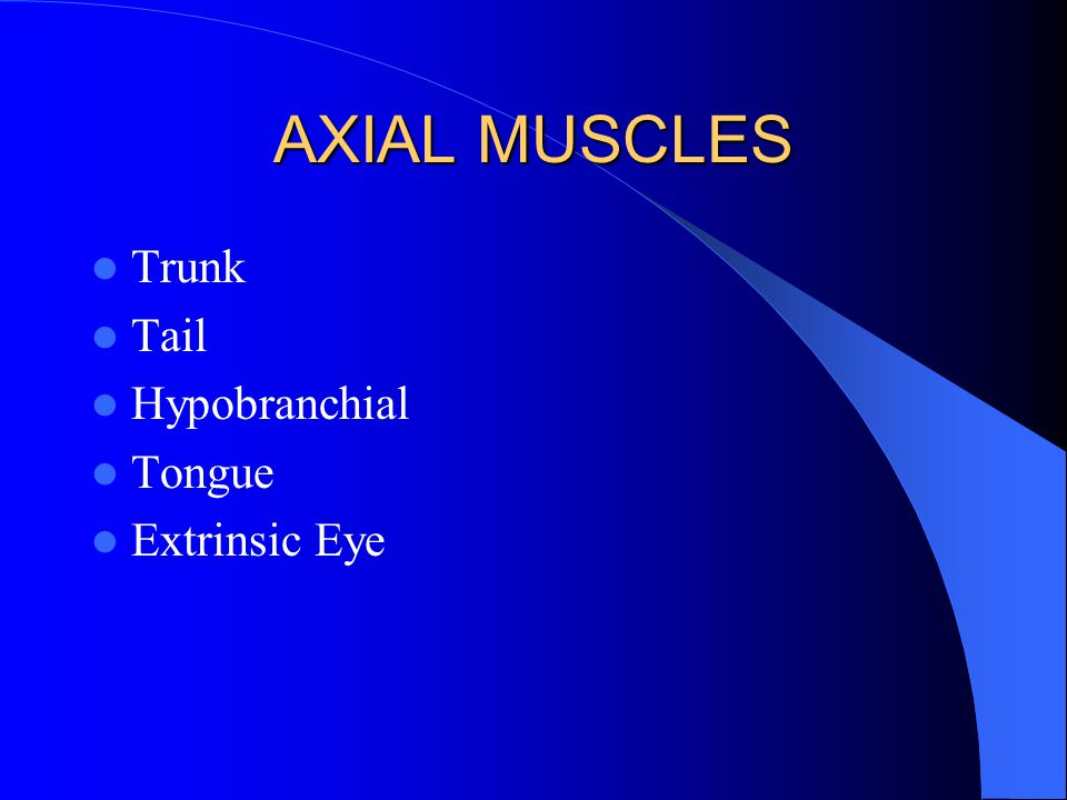AXIAL MUSCLES Trunk Tail Hypobranchial Tongue Extrinsic Eye