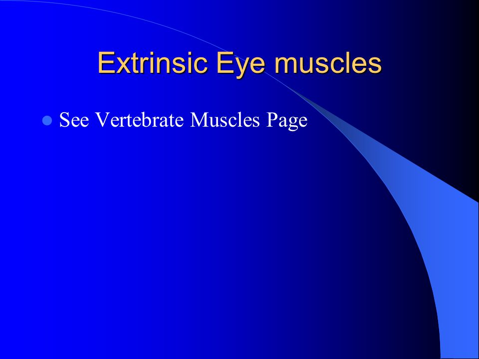 Extrinsic Eye muscles See Vertebrate Muscles Page