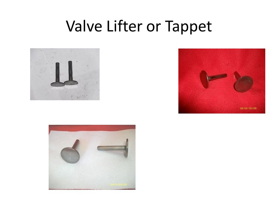 Valve Lifter or Tappet