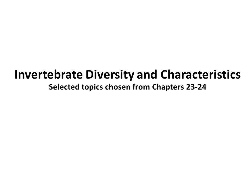 Invertebrate Diversity and Characteristics
