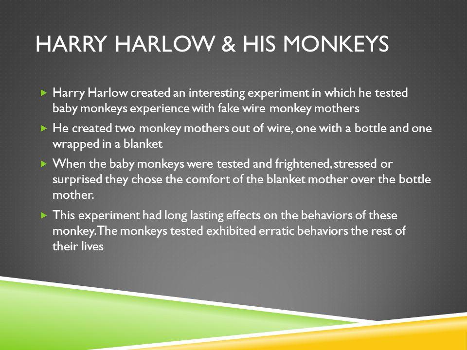 Harry Harlow & His Monkeys