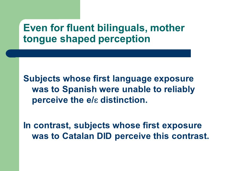 Even for fluent bilinguals, mother tongue shaped perception