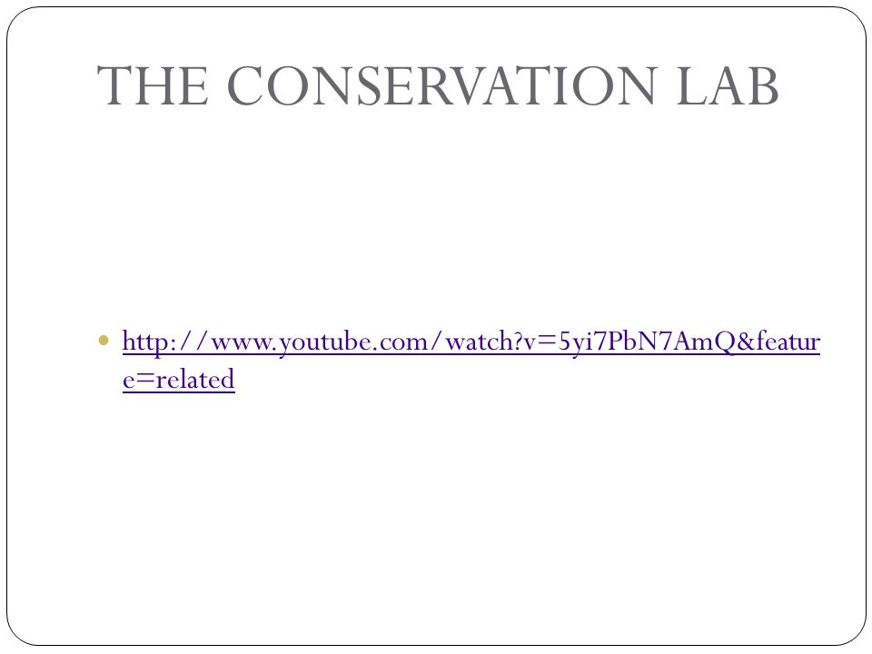 THE CONSERVATION LAB http://www.youtube.com/watch v=5yi7PbN7AmQ&featu re=related